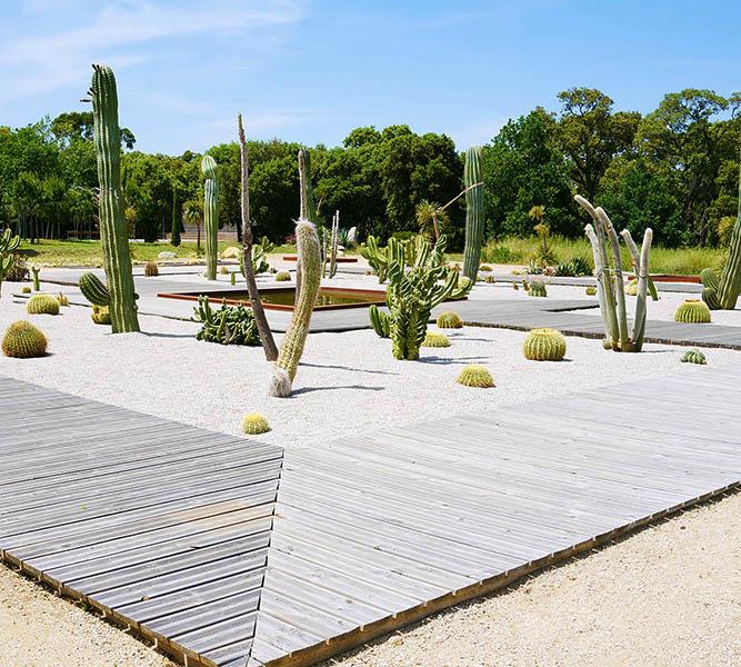 Parc Galéa en Haute Corse proche du domaine Casa di l'Onda